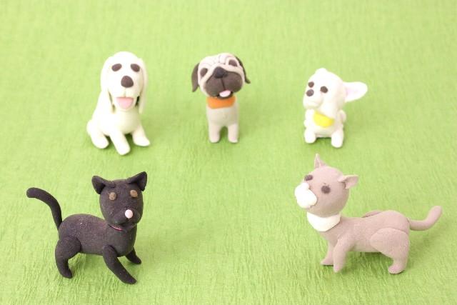 マスコット 犬3頭 猫2匹 背景黄緑