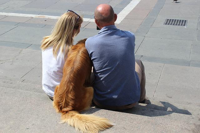 仲の良い犬と人間