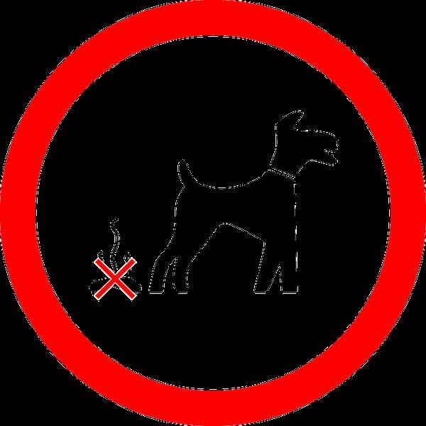 犬のマナー