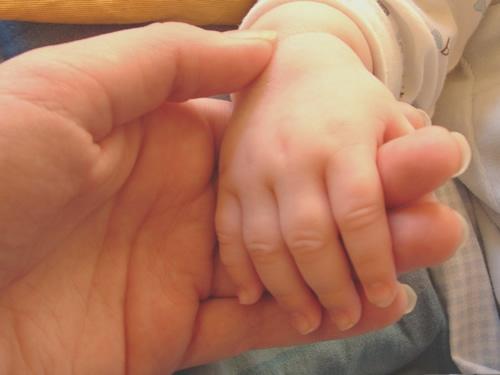 繋いだ親子の手