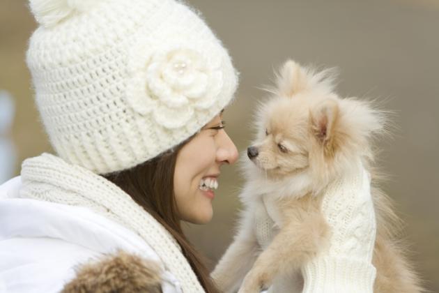 愛犬の匂い対策