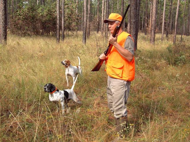 狩りにつき添う犬