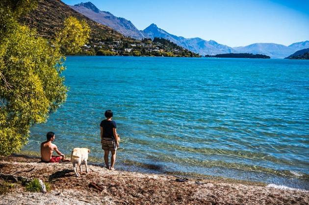 犬と楽しむ観光地