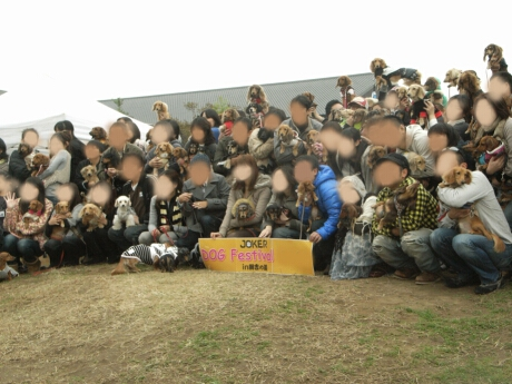JOKER犬種別ドッグフェスティバル2