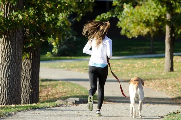 女性と散歩するラブ