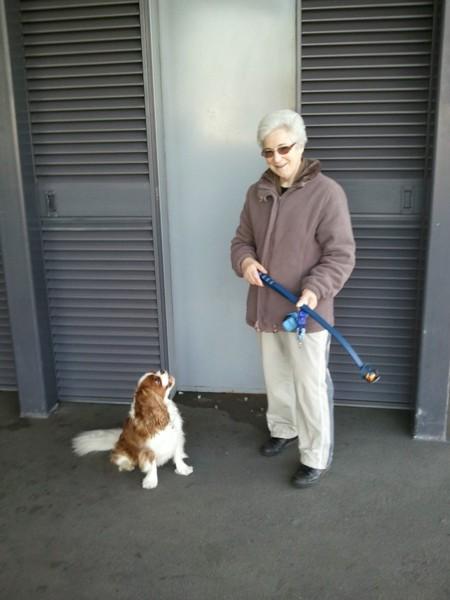 おばあちゃんと愛犬