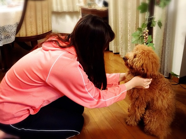 犬と向き合う