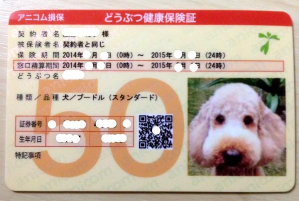 動物保険証