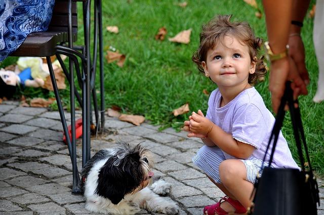 楽しそうな女の子と犬