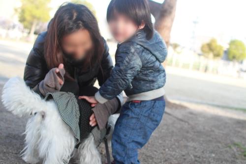 親子と白犬