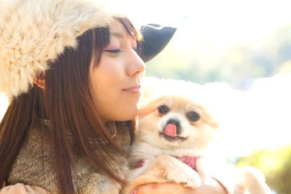 女の子に犬がいてよかったと感謝されて得意になっている犬
