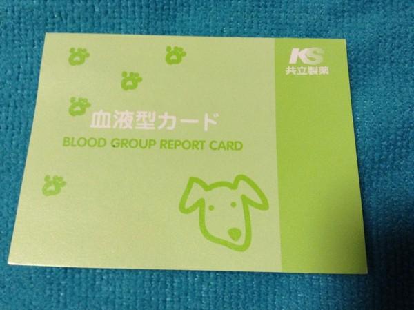血液型カード表紙