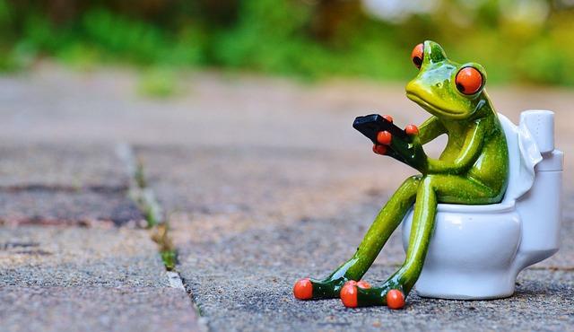トイレでくつろぐ蛙