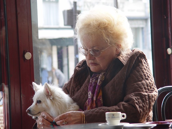 犬を膝に乗せ、うつむく老女