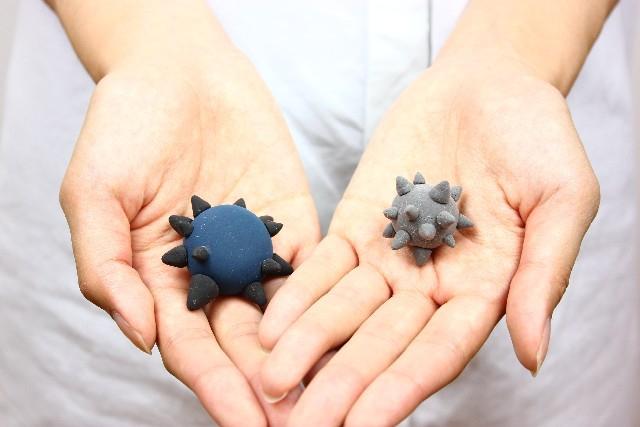 掌とウイルスの模型