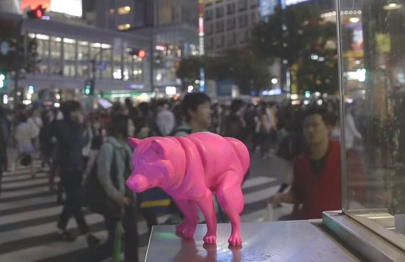 渋谷のいきむ犬