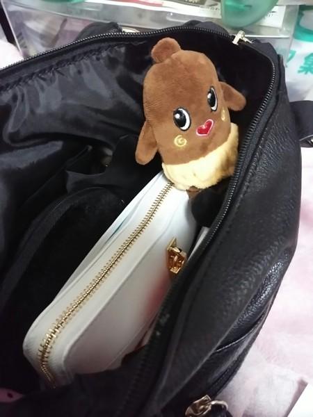 私のバッグの中