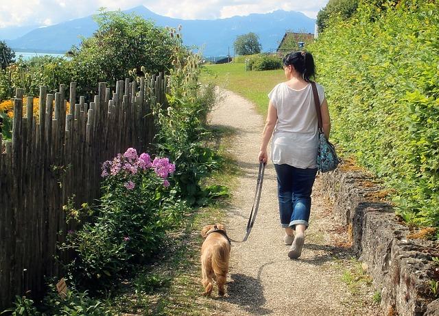 女性と歩く犬
