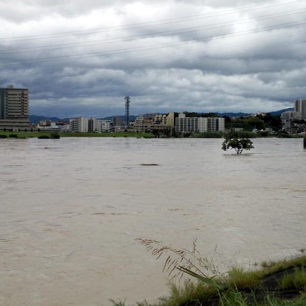 平成25年台風18号淀川河川増水