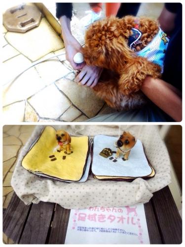 犬の足ふきタオル