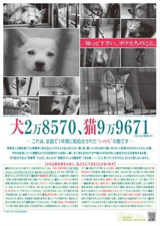 犬、猫、殺処分啓発ポスター