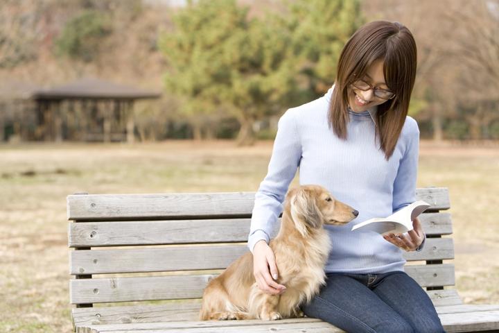 ベンチに座る犬と人