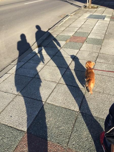 三人でお散歩