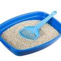 猫砂のおすすめ商品と種類別の選び方!