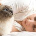 猫と住める賃貸物件の探し方