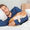 【超危険!】一緒に寝るのがNGな猫とその理由4つ
