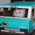 猫ちゃんにピッタリなダンボールをプレゼント♪