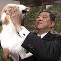 石破茂氏が猫に愛される4つの理由