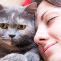 猫の正しい叱り方とその際の注意点
