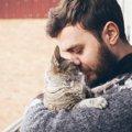猫は飼い主の事を「特別な人」と思っているの?