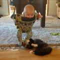 赤ちゃんをクルクル〜!オモチャとして遊ぶ猫ちゃん