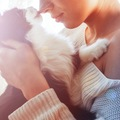 猫が飼い主に見せる10の愛情表現