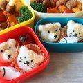 簡単に猫のおむすびができるキッチングッズ おむすびニャン