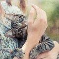 猫を撫でたとき甘噛みしてくるのはなぜ?5つの理由と止めさせる方法