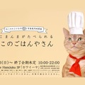 キュートな猫のかぶりものと食事が楽しめる『ねこのごはんや』について