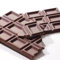 猫がチョコレートを食べると危険?ダメな理由と食べた時の対処法