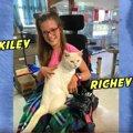 引っ越しで捨てられた白猫と車椅子に乗る少女の『パーフェクトな出会…