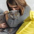 ずっと大好きだよ、虹の橋を渡った愛猫に伝えたいこと