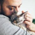 飼い猫にウイルスを移してしまわないか心配…どうするべき?