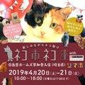 猫のチャリティーイベント「ネコ市ネコ座withピュリナ@島忠ホームズ草…