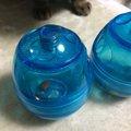 猫の食に関する問題行動の救世主!知育おもちゃエッグササイザー!