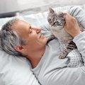 猫が『寝ている飼い主の上に乗ってくる』理由3選!愛猫の気持ちを汲…