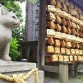猫が迷子に…猫返し神社へ願いを込めて参拝しよう