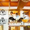 猫を見ながら眠れるホテル★ねこ旅籠!