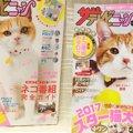 「ザテレビニャン」猫専門のTV情報誌は1冊まるまるネコまみれ!