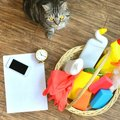 猫の『抜け毛』がたまりやすい場所4選!おすすめの掃除方法とは?